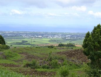 Réalisation du SCoT Territoire Est de la Réunion – CIREST (en cours)- partenariat Opéra / EcoVia) ( en cours)
